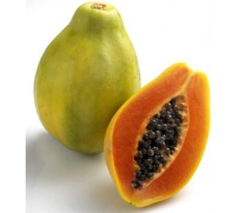 Papaya, Holland, Ripe, มะละกอสุก (pesticide-free) 1pcs