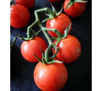 Red Cherry Tomato 500g ( pesticide-free )